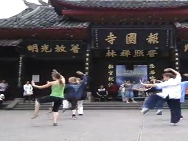 HD Wudang Kung Fu Ba Ji Quan 武当八极拳