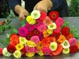 Bouquet Esprit Bollywood avec les ateliers d'Aquarelle