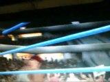 Smackdown Vs Raw 2010 Smackdown Vs Raw 2010 J J Entrance