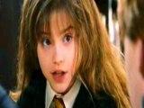 C'est la fin d'une belle histoire ... Dîtes aurevoir à la magie d'Harry Potter ....