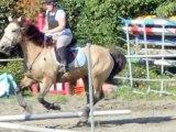 saut d'obstacle avec Idaho cheval d'1m65 au garrot