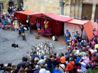Médiévales 2011 : Manu et ses Oies !!!
