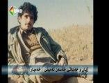 Hassan Xambar-Hassan Amini
