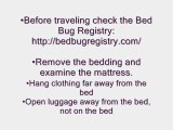 Prevent Bed BPrevent Bed Bugs from Invading Your Home – ...