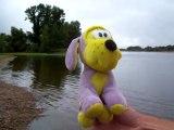 Que fait Kiki à regarder dans l'eau depuis une demi heure?