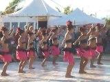 danses tahitiennes - 1