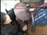 L'équitation à la Bergerie Nationale de Rambouillet