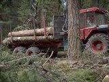 Das Geheimnis unseres Waldes (2011) - Schweizer Trailer