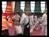 AIKIDO TRADITIONNEL - STAGE AVEC ALAIN PEYRACHE SHIHAN-BOURG EN BRESSE 2011