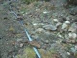 Grand Raid des Pyrénées 2011 : tps 8h00 - 36 km (vers le col de sancour) Episode 8/15