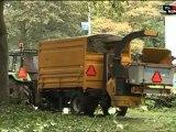 Nijmegen1 Nieuws 09-09-11: snoeien tegen gluurder