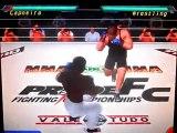 Capoeira vs. Freestyle Wrestling