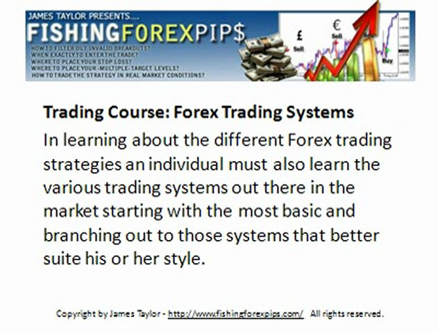Trading Course Forex for Beginners