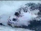 """Orques 1 phoques 0 !  extrait """"la planète bleue"""""""