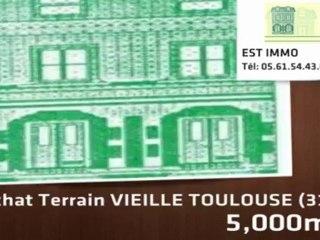 A vendre - terrain - VIEILLE TOULOUSE (31320) - 5 000m²