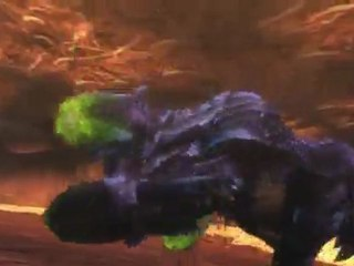 Pub japonaise de Monster Hunter 3 Ultimate
