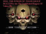 Don Tiger In Full Action(Remix Audio 2011 Song) Presented By Tiger Group Rulez