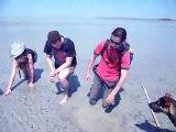 sables mouvants en baie du mont saint michel