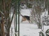 Course poursuite des loulous dans la neige - Janvier 2010.