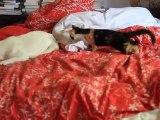 Olga, le bout de papier, le lit, charlotte  27 sept 2011