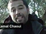 L'or de Bhalil. Les Olives   De la cueillette à l'huile - YouTube