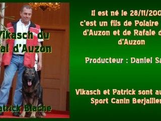 Vikasch du Val d'Auzon - Championnat de France de Campagne