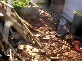 Viesly : un homme met le feu à son ancienne maison et se pend dans son camion