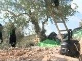Israel begins moving Palestinians before prisoner swap