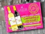 Vignobles Cap Leucate - Vin nouveau