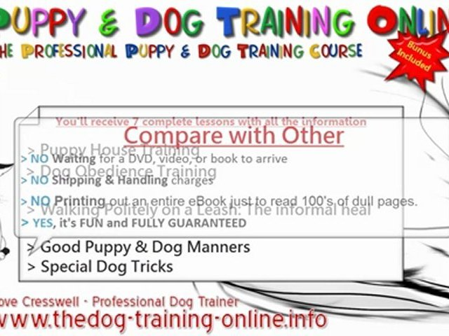Professional Dog And Puppy Training