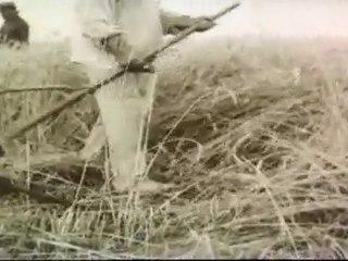 Famine-33 Holodomor