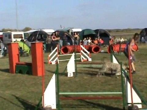 Baïla jumping +  Mehun 16 10 2