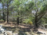 bayramlı-ören kanyonu 30.10.2011