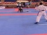 Karate | WKF | -60 Kumite Individual Male Seniors, Istanbul 2011