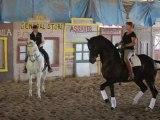 Dressage & Charro Pro's Share Tips With Equine VIP