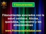 FITONUTRIENTES Y SALUD CARDIACA PARTE II (NUTRICION Y SALUD)