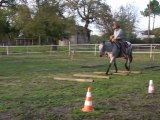 """Equitation americaine par l'équithologie. EDUCATION AU  TRAIL  AVEC BOSAL SUR JEUNE CHEVAL  APPALOOSA  au ranch tinkapalo  par  Tony Clemenceau """" HORSEMAN """""""