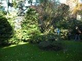 Collections et Jardins Albert-Kahn (Paris, France)