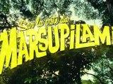 Sur la piste du Marsupilami - Première Bande-Annonce [VF|HD]