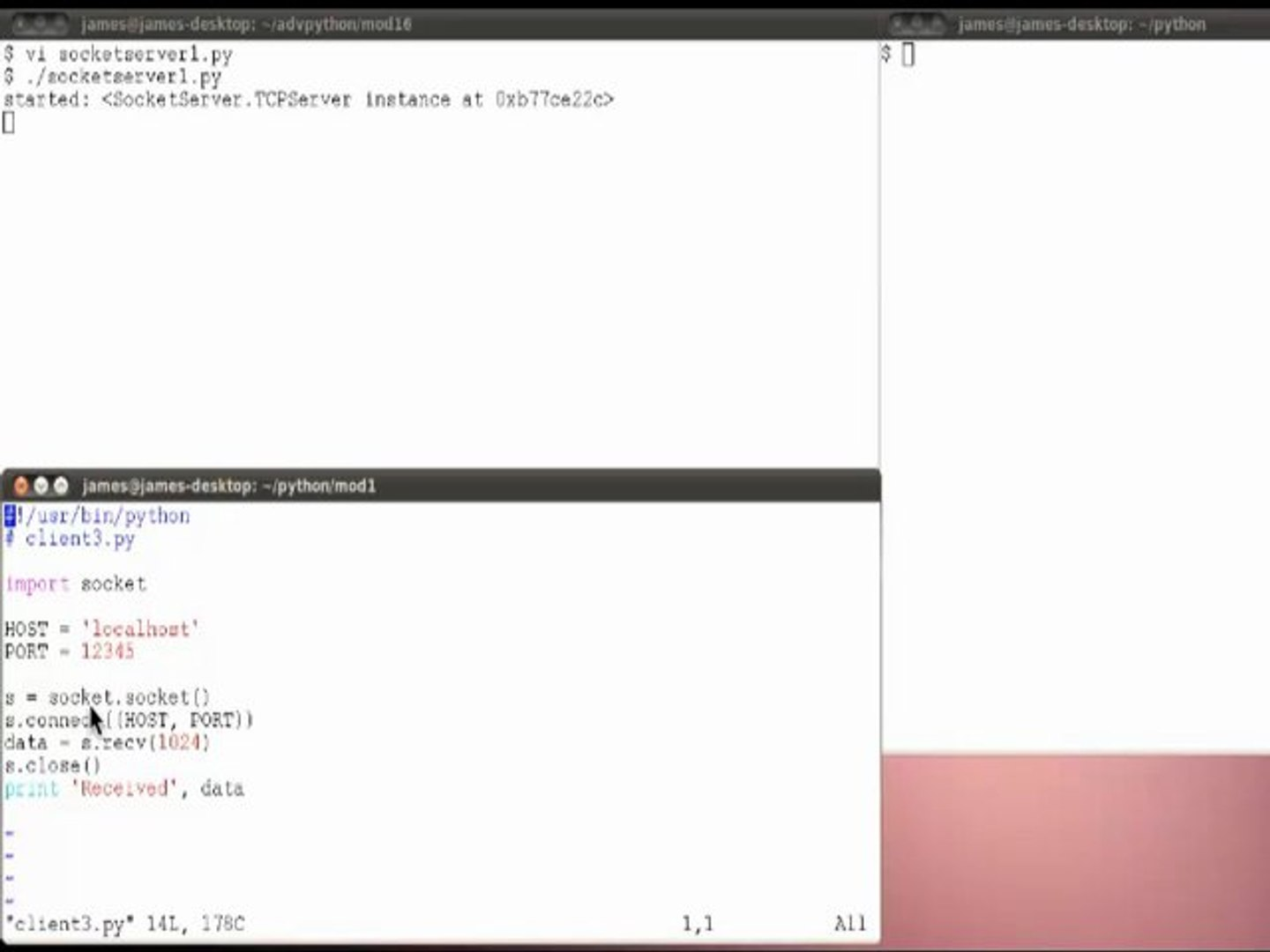 Learn about Socket Server in Advanced Python Programming