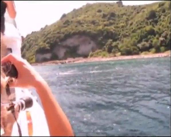 İstanbul Boğazı'nda Yunus Gözlemi - Dolphin Watch in the Bosphorus - 16 Temmuz/July 2011