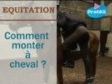 Equitation  - Comment monter à cheval ?