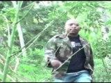 (Angelo) reggae paysage