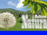 rabiosa natura hd