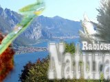 rabiosa natura 2