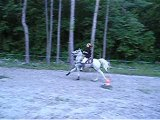 Pole Bending entrainement