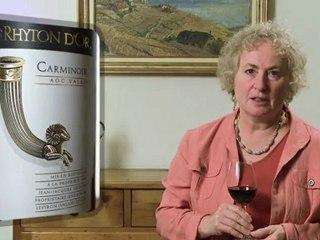 Carmoinoir 2009 Le Rhyton d'Or - Wine Tasting