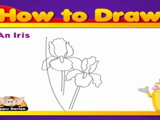 Learn to Draw Flower in Hindi - Iris