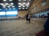 une partie de mon premier concours avec mon poney