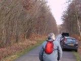 Chasse à courre du cerf : le passage de l'animal hardé